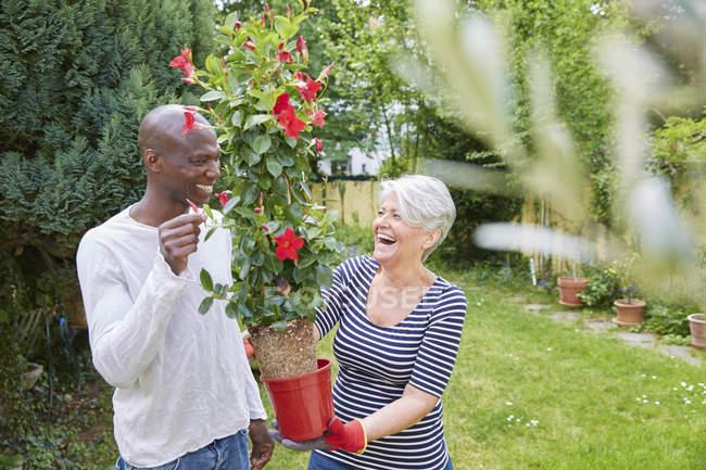 Rindo vizinhos no jardim com plantas em pote — Fotografia de Stock