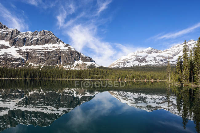 View of Lake O'Hara with mountains and trees under blue cloudy sky at Yoho National park, British Columbia, Canada, — Stockfoto