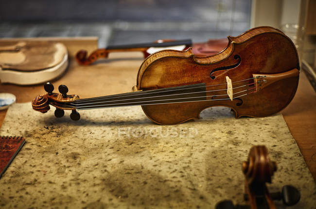 Repaired instruments in a violin maker's workshop — Stock Photo