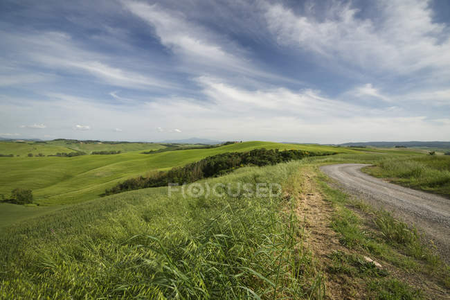 View of typical landscape with dirt track near Siena at Province of Siena, Tuscany, Italy, — Stock Photo