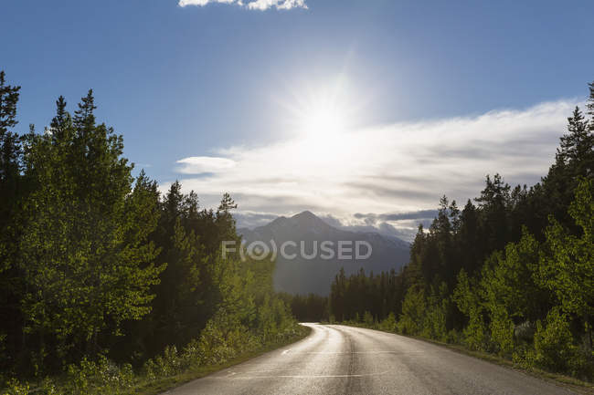 Canada, Alberta, Jasper National Park, Banff National Park, Icefields Parkway — Stock Photo