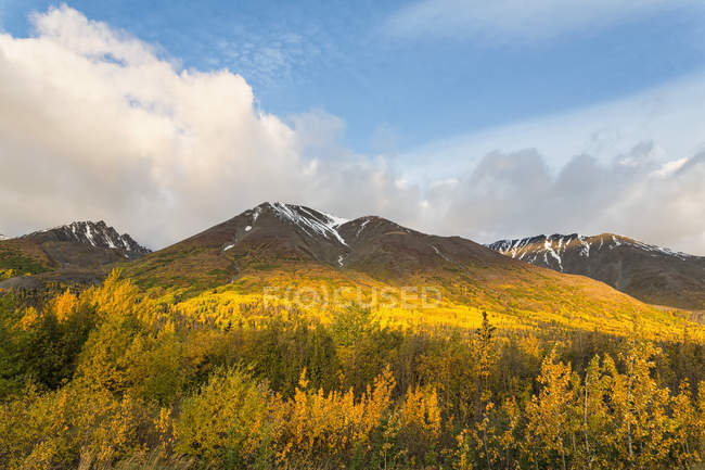 Canada, vista del Kluane National Park and Reserve — Foto stock