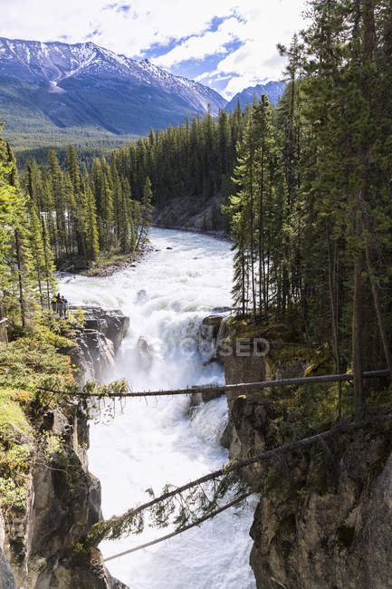 Canada, Alberta, Jasper National Park, Sunwapta Falls, Sunwapta River — Stock Photo