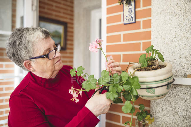 Senior woman taking care of her plants — Stock Photo