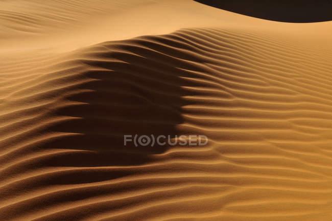 Фелия, Вид на песчаные дюны в Эрг Тулахуне в дневное время — стоковое фото