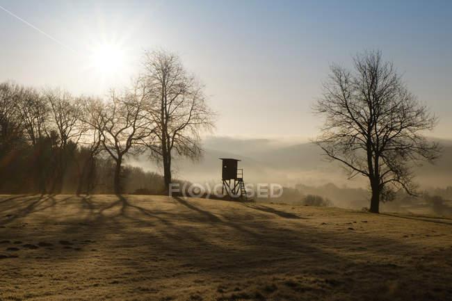 Германия, Северный Рейн-Вестфалия, Бергиш, пейзаж с поднял спрятать в утреннем тумане — стоковое фото