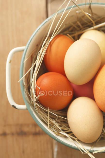 Крупным планом красочные пасхальные яйца в корзину, студия выстрел — стоковое фото