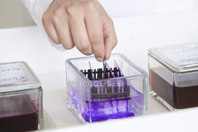 Female food analyst working in laboratory, detail — Stock Photo