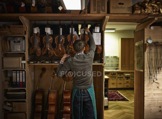 Violin maker with restored violins in workshop — Stock Photo