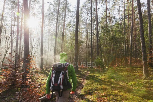 Germany, Rhineland-Palatinate, back view of hiker with backpack at Dahn Rockland on winter day — Stock Photo