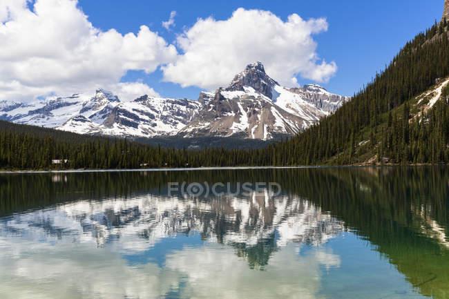 Canada, British Columbia, Yoho Nationalpark, Lake o ' Hara e montagne sopra il lago di acqua durante il giorno — Foto stock