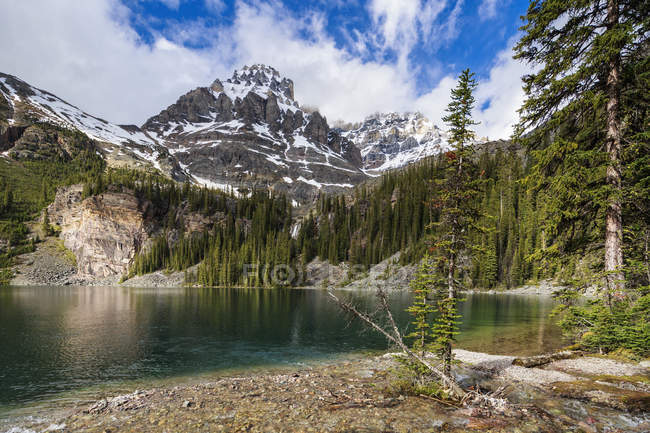 Canada, British Columbia, Yoho Nationalpark, Lake O'Hara and Mount Huber — Stock Photo