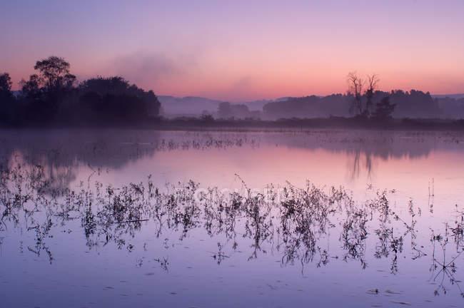 Германия, маленькое озеро на восходе солнца над водой — стоковое фото