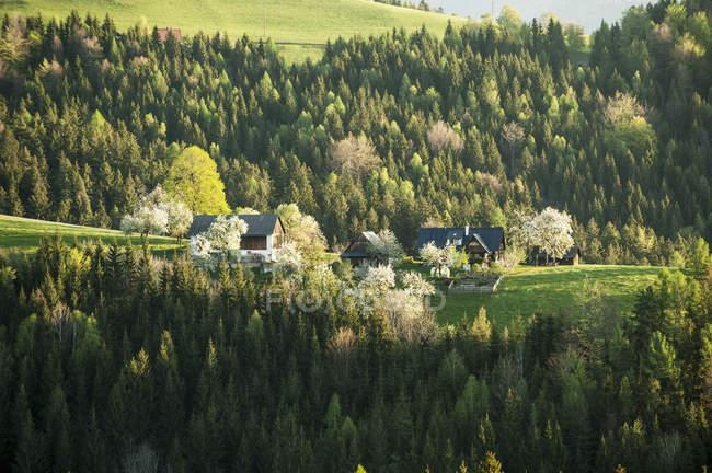 Autriche, Styrie, Styrie occidentale, Deutschlandsberg, fermes sur un paysage florissant — Photo de stock