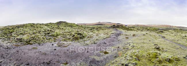 Vista de campos de lava musgoso no diurno, Islândia — Fotografia de Stock