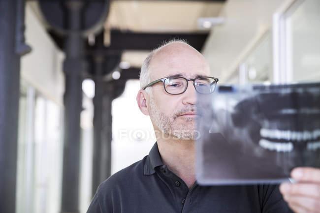 Стоматолог, изучающий рентгеновское изображение — стоковое фото