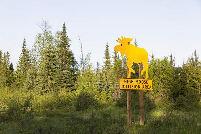 Canadá, Colúmbia Britânica, Alto Alce Área de Colisão assinar na estrada de chaleira — Fotografia de Stock