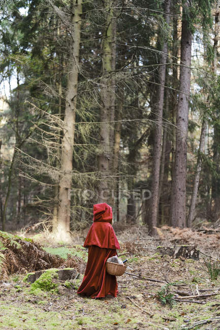 Little girl masquerade as Red Riding Hood standing in the wood — Stock Photo
