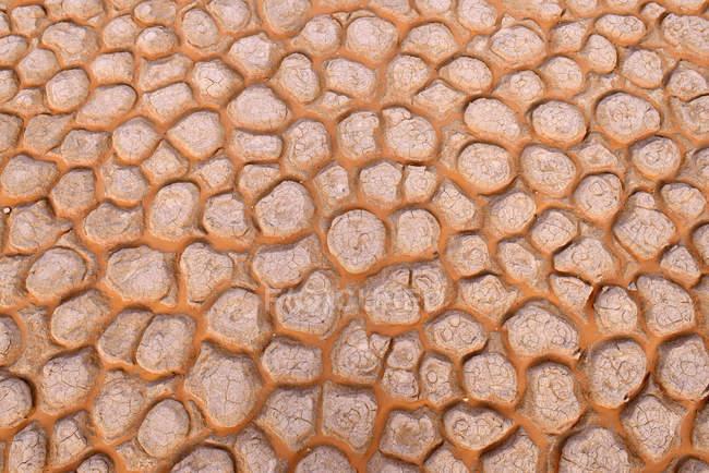 Argelia, Tassili n 'Ajjer, Sahara, superficie rota de una sartén de sal y arcilla - foto de stock