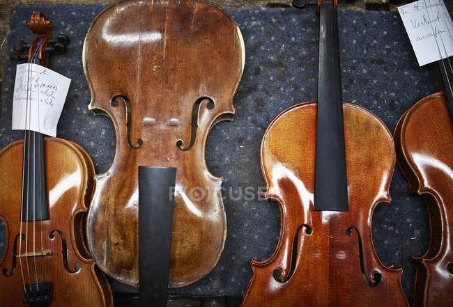 Violins to be repaired in a violin maker's workshop — Stock Photo
