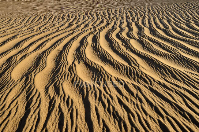 Algérie, Vue des dunes de sable près de Tehenadou — Photo de stock