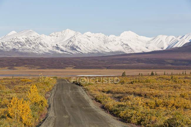 Route de Denali à l'automne avec la chaîne de montagnes sur le fond, Alaska, Usa — Photo de stock