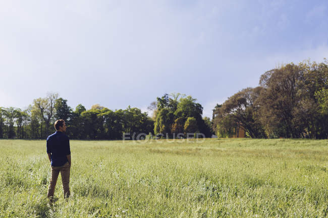 Back view of man standing on a meadow — Stock Photo