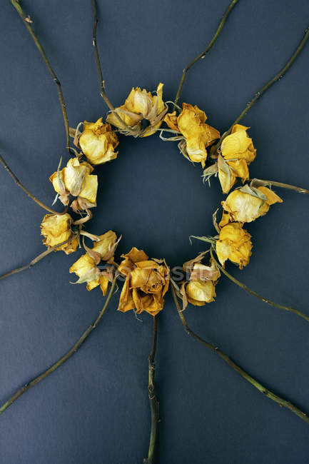 Rose gialle in cerchio su sfondo scuro — Foto stock