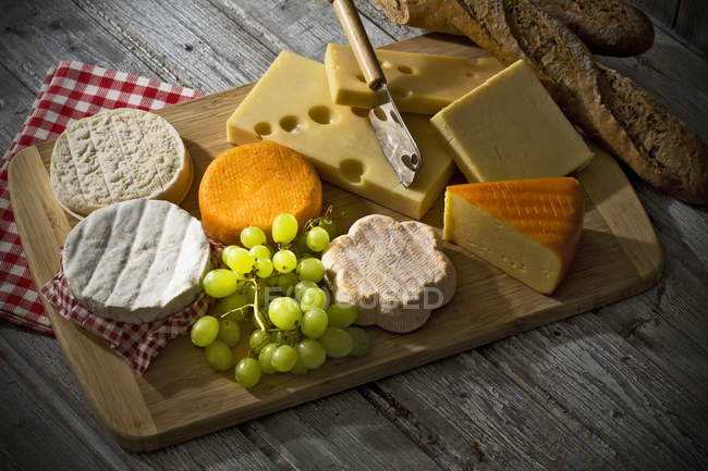Francés, queso cheddar, queso blando, queso de oveja, camembert, queso elemental y austríaco de la montaña sobre tablero de madera - foto de stock