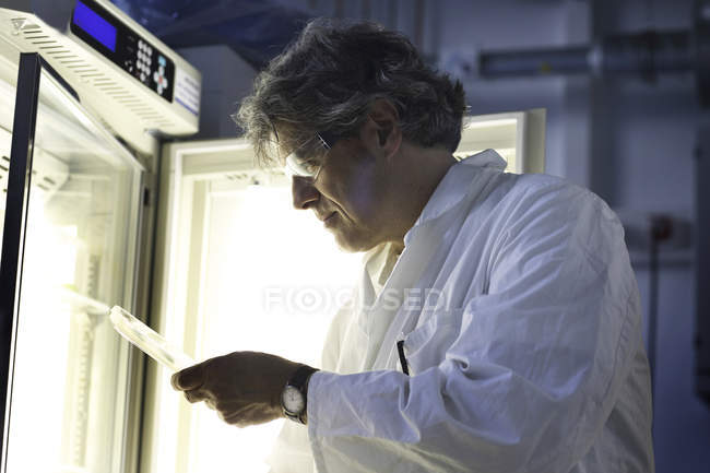 Scientist in laboratory evaluating samples — Stock Photo