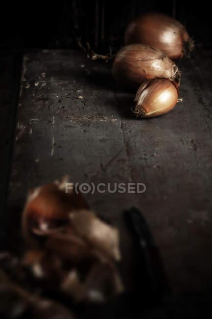 Cascas de cebola e onionsbulbs fresco no fundo escuro de madeira — Fotografia de Stock