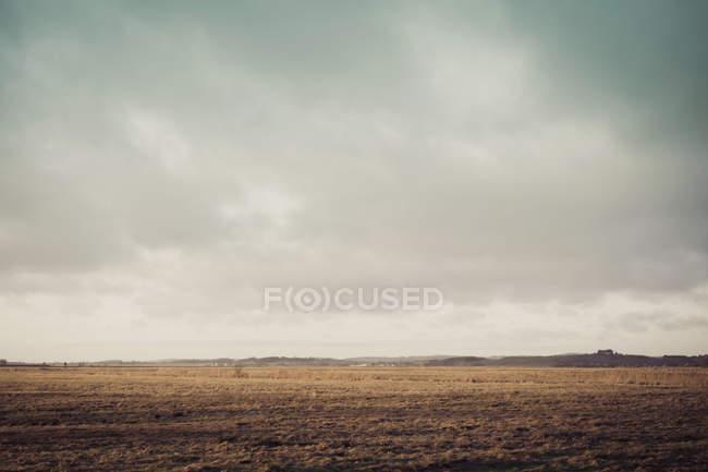 Allemagne, Mecklembourg-Poméranie occidentale, Ruegen, Paysage des champs en hiver pendant la journée — Photo de stock