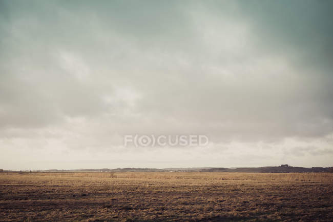 Germany, Mecklenburg-Western Pomerania, Ruegen, Fields landscape in winter during daytime — Stock Photo