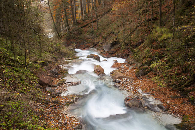 Germany, Bavaria, Ramsau, Wimbach Valley with river stream surrounded by trees and hills — Stock Photo
