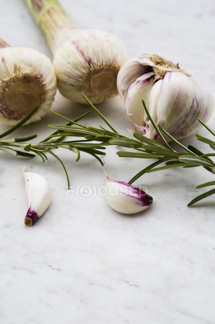 Свежие луковицы чеснока, зубчик чеснока и розмарин на белом мраморе — стоковое фото
