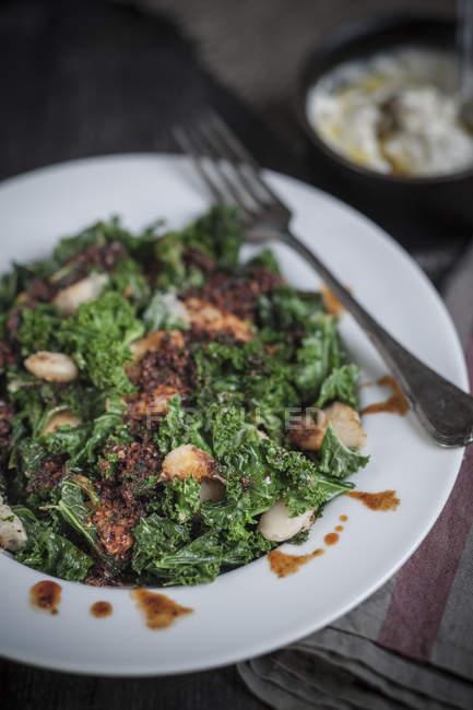 Rühren Sie gebratener Kohl mit weißen Bohnen und Pul Biber (türkische Paprika Gewürz) auf Platte, in den Hintergrund-Joghurt-dip — Stockfoto