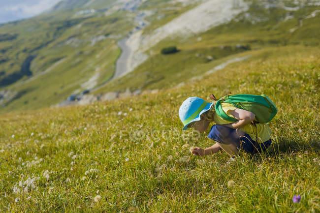 Italy, Province of Belluno, Veneto, Auronzo di Cadore, little boy crouching on alpine meadow near Tre Cime di Lavaredo — Stock Photo