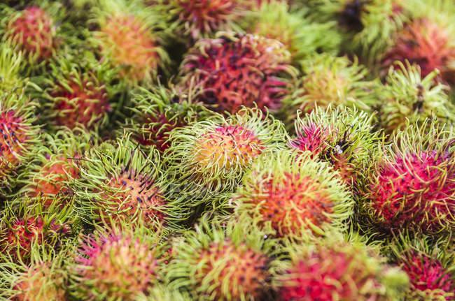 Hailand, Phang Nga, Mercado semanal cerca de Khuekkhak, Rambutan - foto de stock