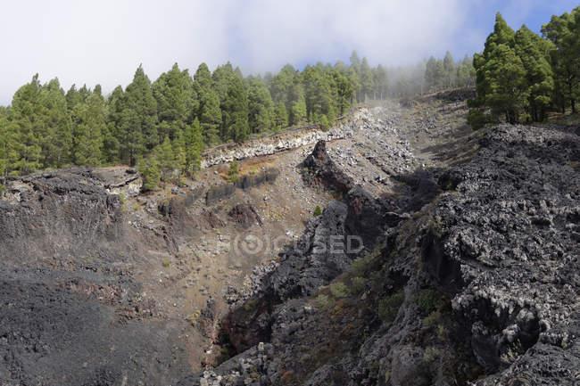 Spain, Canary Islands, La Palma, Coladas de San Juan, Cumbre Vieja, Lava flow and trees during daytime — Stock Photo