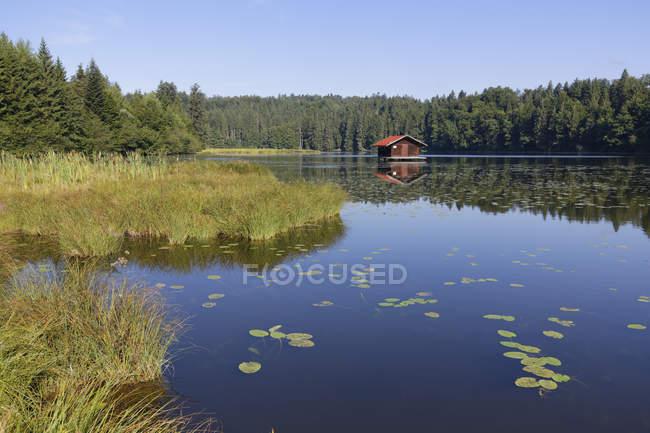 Allemagne, Haute-Bavière, Bavière, Holzkirchen, lac Hackensee près de Kleinhartpenning — Photo de stock
