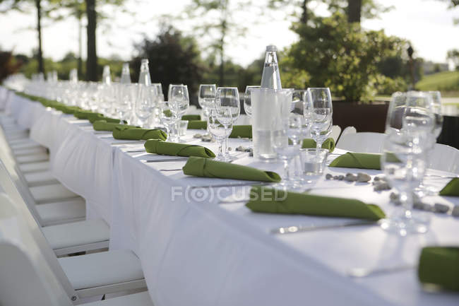 Festif mis à table avec les serviettes de table en verts et verres à vin — Photo de stock