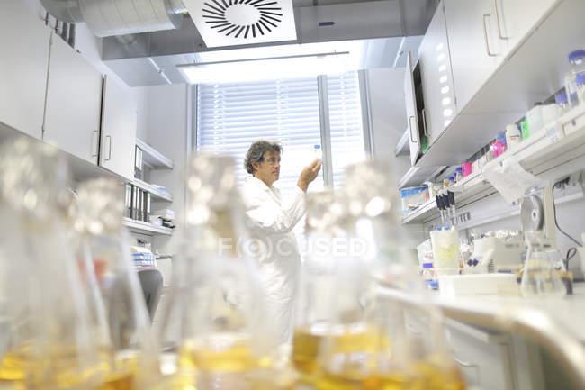 Ученый в лабораторной оценке образцов — стоковое фото