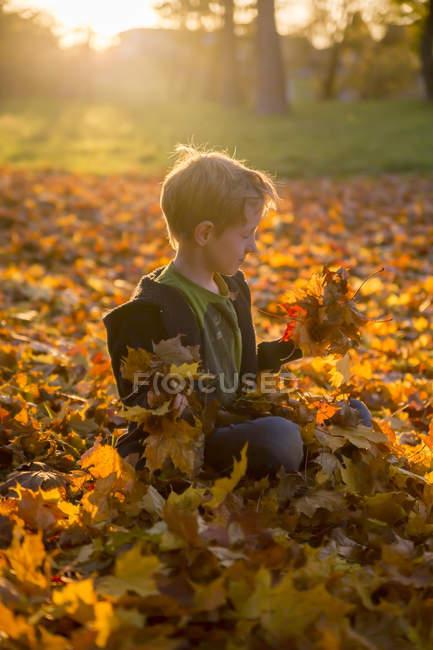 Little boy sitting on autumn leaves in park — Stock Photo