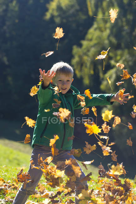 Little boy throwing autumn leaves in park — Stock Photo
