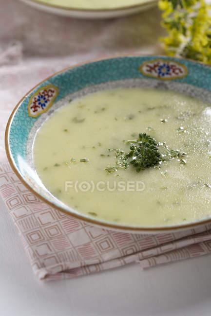Brokkoli Creme Suppe auf Tuch — Stockfoto