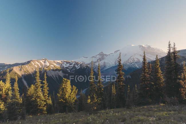 États-Unis, État de Washington, Vue sur le parc national du Mont Rainier — Photo de stock