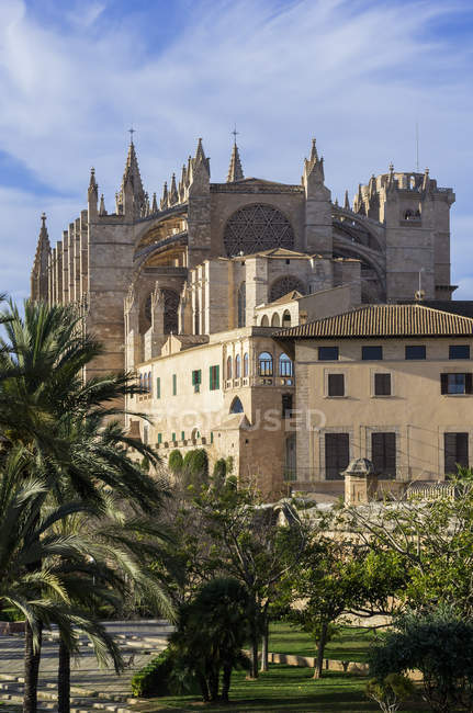 Spain, Majorca, Palma, Cathedral La Seu  during daytime — Stock Photo
