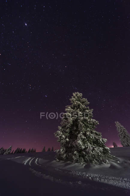 Germany, Baden-Wuerttemberg, Feldberg, winter landscape by night — Stock Photo