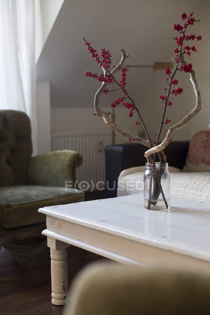 Rustic living room with decorative plants in vase — Stock Photo