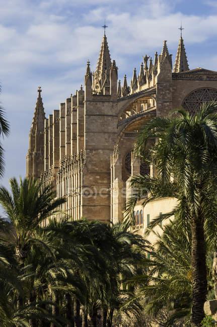 España, Mallorca, Palma, Catedral La Seu durante el día - foto de stock